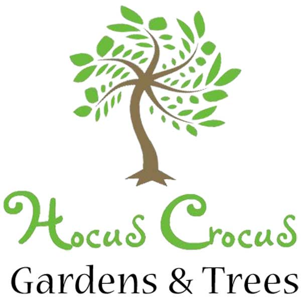 Hocus Crocus Gardens & Trees, Harrogate & Nidderdale Logo