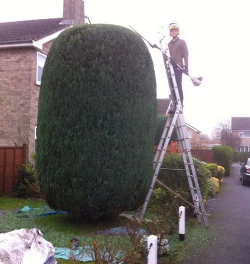 Photo of Ned shaping large bell - Topiary